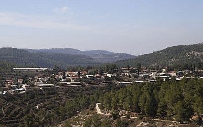View of Even Sapir and the forest that surrounds it on the outskirts of Jerusalem, October 23, 2013. (Flash90)