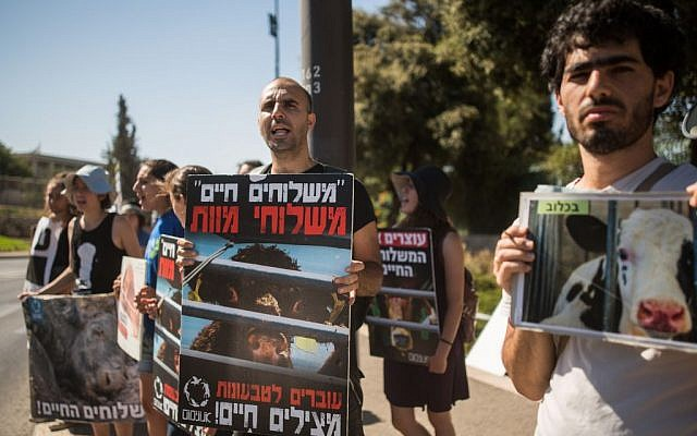 Israelis protest for animal rights in front of the Knesset in Jerusalem on July 13, 2016. (Photo by Yonatan Sindel/Flash90)