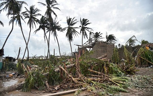Downed trees are seen near destroyed house after the passing of Hurricane Matthew, in Sous Roche, in Les Cayes, Southwest Haiti, on October 6, 2016. (AFP PHOTO / HECTOR RETAMAL)