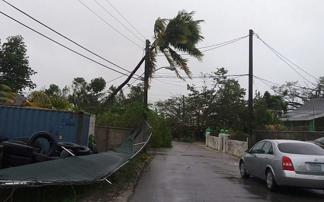 Damaged trees and power lines are seen near a road in Nassau, New Providence island in the Bahamas, on October 6, 2016, after the passing of Hurricane Matthew. (AFP PHOTO / Sloan SMITH)