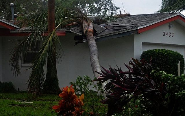 A downed tree lies on top of a house after the passing of Hurricane Matthew in Titusville, Florida on October 7, 2016. (AFP PHOTO/BRUCE WEAVER)