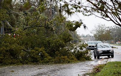 Vehicles drive around a fallen tree, in Ormond Beach, Florida on October 7, 2016 as Hurricane Matthew hits the Atlantic coast of the United States, (Drew Angerer/Getty Images/AFP)