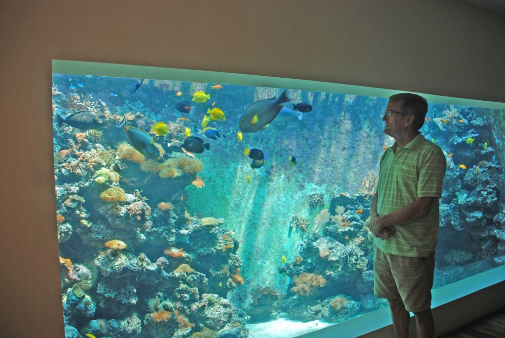 Eli Fruchter standing next to what might be the world's largest home reef aquarium in his living room in Haifa. (Miriam Nahum/Times of Israel)