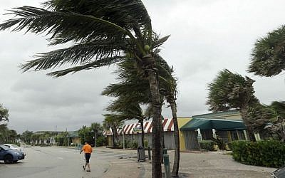 Palm trees sway in high gusts of wind, Thursday, Oct. 6, 2016, in Vero Beach, Florida. (AP Photo/Lynne Sladky)