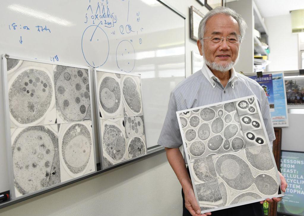 In this July, 2016 photo, Japanese scientist Yoshinori Ohsumi smiles at the Tokyo Institute of Technology campus in Yokohama, south of Tokyo.. (Akiko Matsushita/Kyodo News via AP)