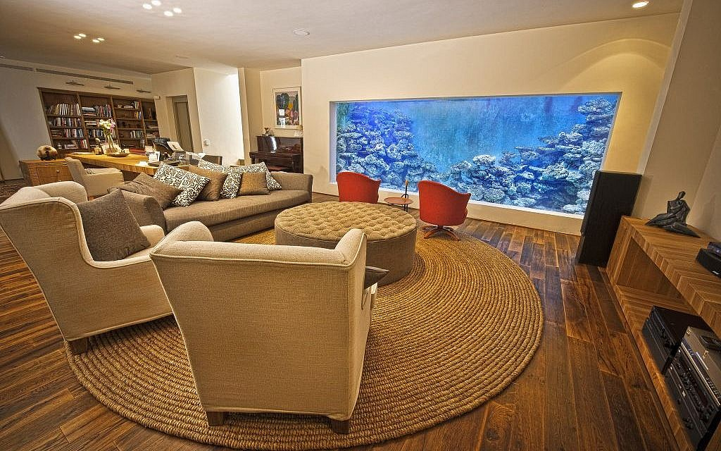 Israels Own Aquaman Meet The Ceo Who Built A Home Aquarium