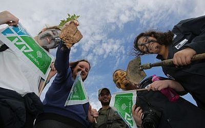 Israelis holding signs of the Jewish National Fund (Keren Kayemeth LeIsrael) take part in a Tu Bishvat tradition of planting trees in the West Bank Jewish settlement of Michmash, Wednesday, January 15, 2014. (Photo by Yossi Zamir/Flash 90)
