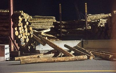 A stack of collapsed logs are seen at a wharf in Wellington early on November 14, 2016 following an earthquake centered some 90 kilometers (57 miles) north of New Zealand's South Island city of Christchurch. (AFP PHOTO / Marty Melville)