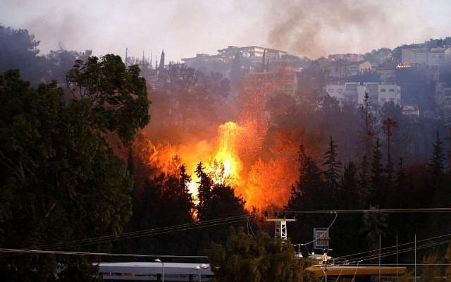 A picture taken on November 24, 2016 shows a fire raging in the northern Israeli port city of Haifa. (AFP PHOTO / AHMAD GHARABLI)