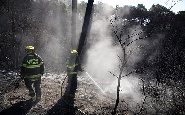 Israeli firefighters extinguish flames in Haifa following a massive wildfire that swept through the northern city, on November 25, 2016. (AFP/Menahem Kahana)