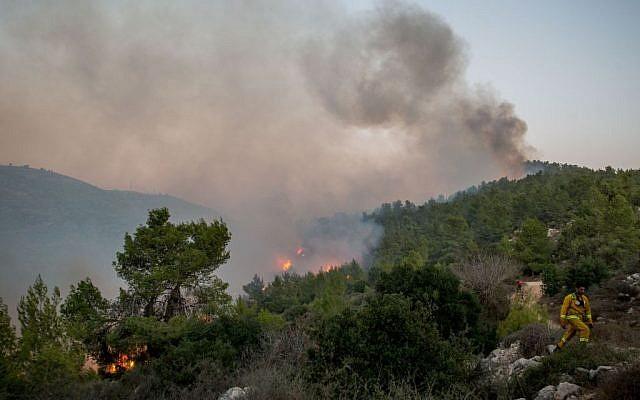 Fire fighters try to extinguish a blaze at Nataf, outside Jerusalem, on November 25, 2016. (Yonatan Sindel/Flash90)