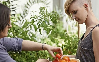 Flux's Eddy aims to make growing food at home easier (Courtesy)