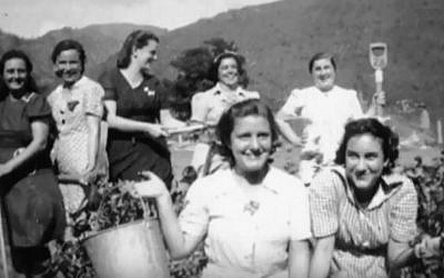 Trinidad did not house the only refugee camps in the Caribbean during WWII. Pictured are residents of Jamaica's 'Gibraltar Camp,' where approximately 300 Polish Jews and 500 Dutch Jews were housed between 1942 and 1944. (YouTube screenshot)
