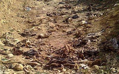 A mass grave of Yazidis in Sinjar, Iraq. (CC BY-SA 4.0: Wikipedia)