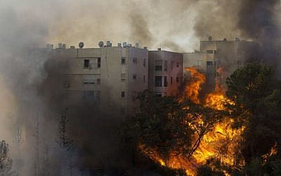 A fire burns in Haifa, Israel, Thursday, November 24, 2016. (AP Photo/Ariel Schalit)