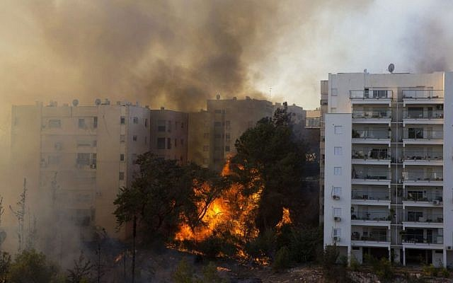 A picture taken on November 24, 2016 shows a bushfire raging in the northern Israeli port city of Haifa. Hundreds of Israelis fled their homes on the outskirts of the country's third city Haifa with others trapped inside as firefighters struggled to control raging bushfires, officials said. (AFP PHOTO / Jack GUEZ)