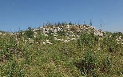 Ruined Arab building within JNF forest in Bayt Nattif (CC BY-SA Davidbena, Wikipedia)