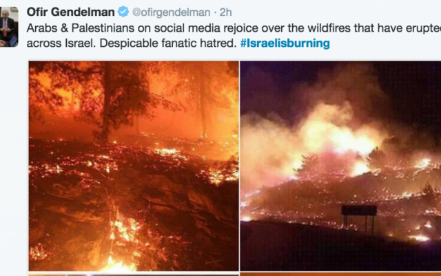 Screenshot of Israeli Prime Minister spokesperson Ofir Gendelman's tweet condemning celebrations on Twitter as fires raged across Israel.