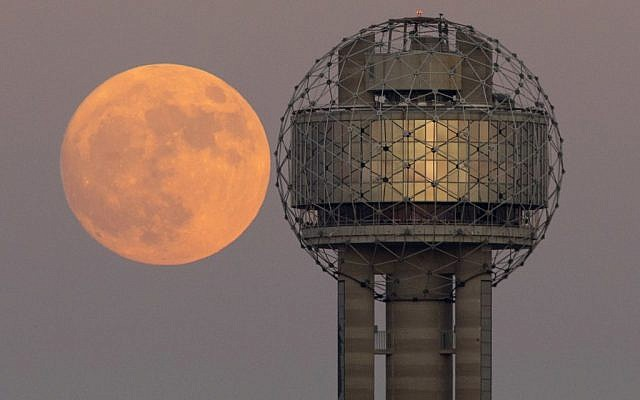 The moon rises behind Reunion Tower in downtown Dallas, Sunday evening, Nov. 13, 2016. On Monday the supermoon is the closest full moon to earth since 1948, and it won't be as close again until 2034. (Tom Fox/The Dallas Morning News via AP)
