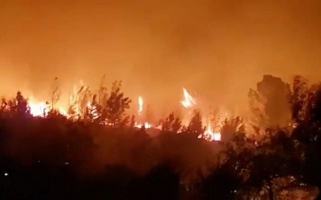 A forest fire rages outside Neve Shalom, November 22, 2016. (Israel Police)
