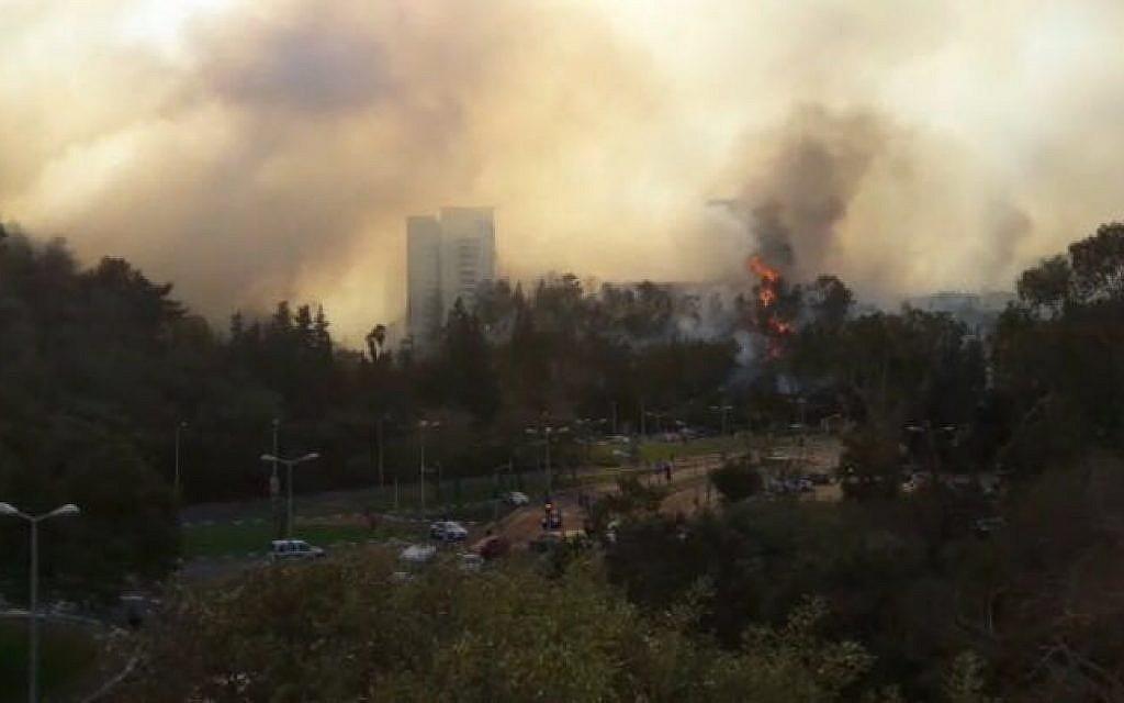 A wildfire near Haifa on November 24, 2016. (Israel police)