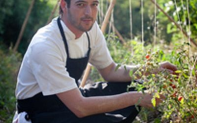 Chef Tomer Niv from Rama's Kitchen, picking herbs in the landscape of the Judean Hills (Courtesy Rama's Kitchen)