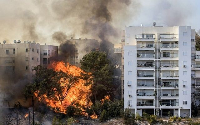 A picture taken on November 24, 2016 shows a bushfire raging in the northern Israeli port city of Haifa. Hundreds of Israelis fled their homes on the outskirts of the country's third largest city with others trapped inside as firefighters struggled to control the blazes, officials said. (AFP PHOTO / Jack GUEZ)