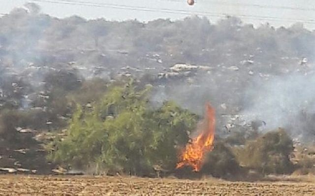 A brush fire that erupted in the Haruvit Forest, outside the southern city of Kiryat Malachi on November 27, 2016. (Israel Police)