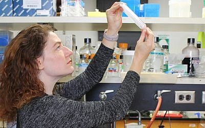 Joanna Slusky, a professor of molecular biosciences and computational biology at the University of Kansas, at work in her lab. (Sarah Mullinax/via JTA)