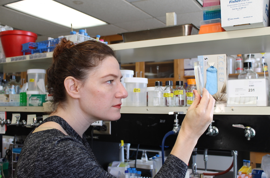 Joanna Slusky designed a protein that appears to be one of the most promising responses yet to the threat of antibiotic-resistant bacteria. (Ryan Feehan/via JTA)