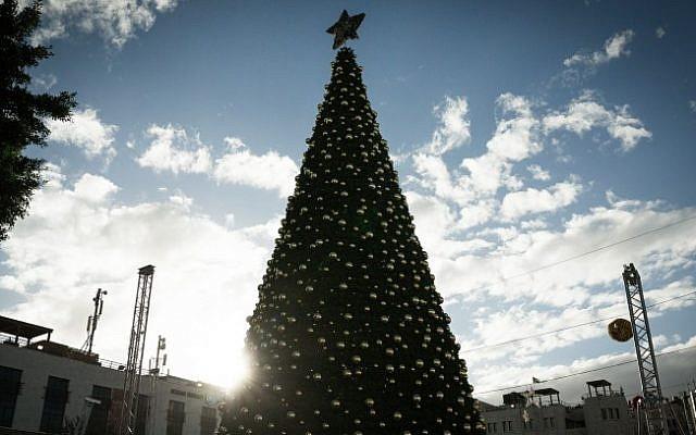 A 17-meter (55-foot) Christmas Tree in Manger Square in Bethlehem, on November 31, 2015. (Sebi Berens/Flash90).