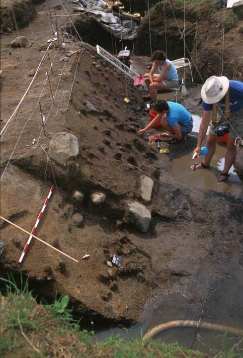 Excavations in the waterlogged prehistoric site of Gesher Benot Ya'aqov. (Credit: Naama Goren-Inbar)