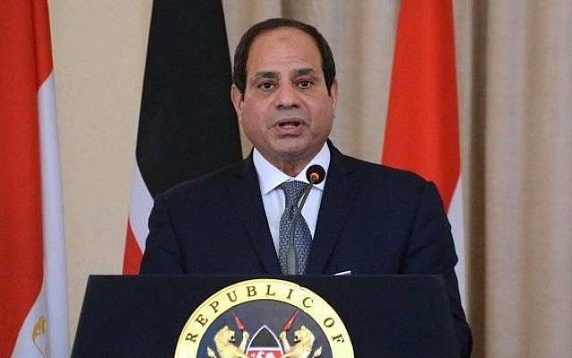 Egyptian President Abdel-Fattah el-Sissi speaks during a press conference on February 18, 2017 (AFP/Simon Maina)