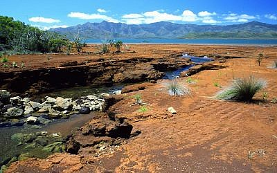 New Caledonia (via JTA)