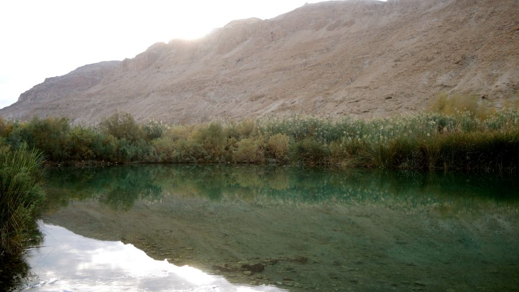 The freshwater holding pools at Einot Tzukim on January 3, 2017. Three pools act as reservoirs for the NIS 2.5 million pumping project, (Melanie Lidman/Times of Israel)