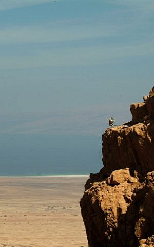The northern face of Masada (Deborah Sinai/Flash90)