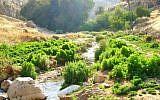 Nahal Prat (Wadi Kelt), a nature reserve and park in the Desert of Judea, Israel (Public domain/Wikipedia)