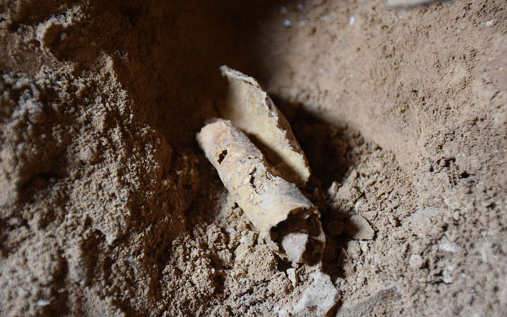 Remnant of scroll found in a cave near Qumran after it was removed from jar (Casey L. Olson and Oren Gutfeld, Hebrew University)