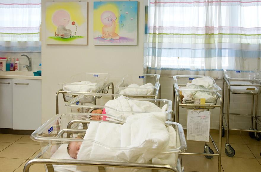 Study Of Israeli Baby Formula Tragedy Highlights Vital Vitamin B1 Role   The Times Of Israel