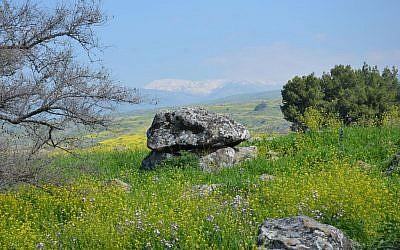 A dolmen in the northern Galilee (Gonen Sharon, Tel Hai College)
