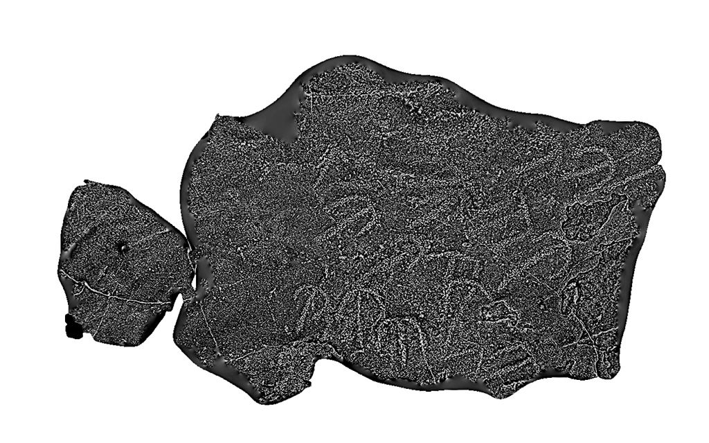 3D model of rock art drawings etched into the basalt capstone of Dolmen 3 in the Shamir Dolmen Field in northern Israel. (Courtesy of the digital archaeology laboratory at Hebrew University of Jerusalem)