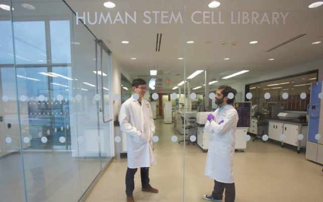 Researchers at the Canada McMaster Stem Call Research Institute in Toronto (Courtesy)