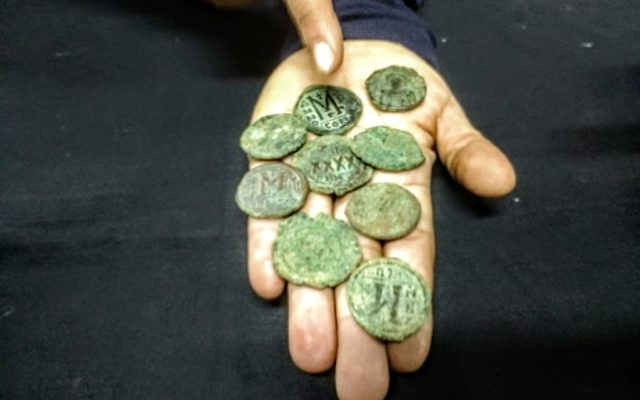 A hoard of Byzantine coins found near Ein Nakuba by Israel Antiquities Authority archaeologists in 2016 and shown to the press on March 19, 2017. (Ilan Ben Zion/Time of Israel staff)