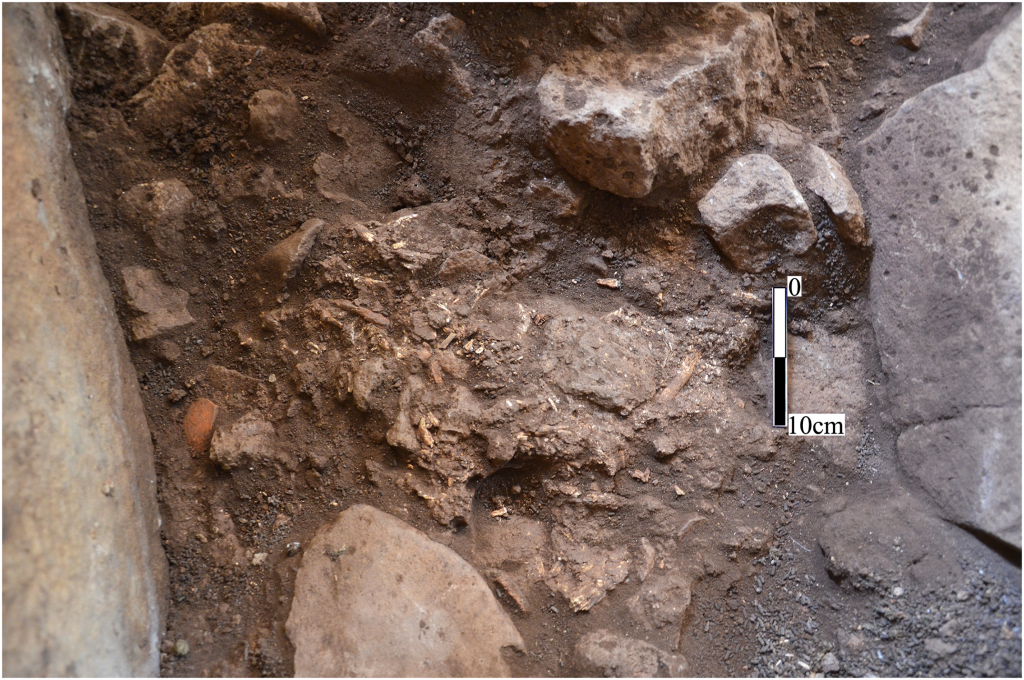 Bones and ceramic remains exposed in central chamber 3a of a dolmen in the Shamir Dolmen Field in northern Israel. (CC BY Gonen Sharon via PLOS ONE)