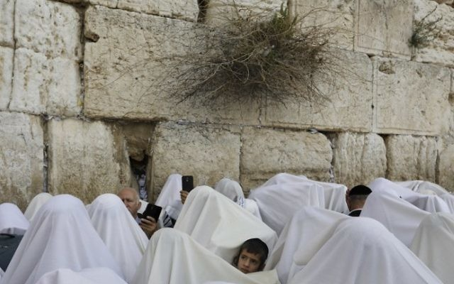 Jewish worshippers cover themselves with prayer shawls while praying at the Western Wall in Jerusalem's Old City during the Passover priestly blessing on April 13, 2017. (AFP Photo/Menahem Kahana)