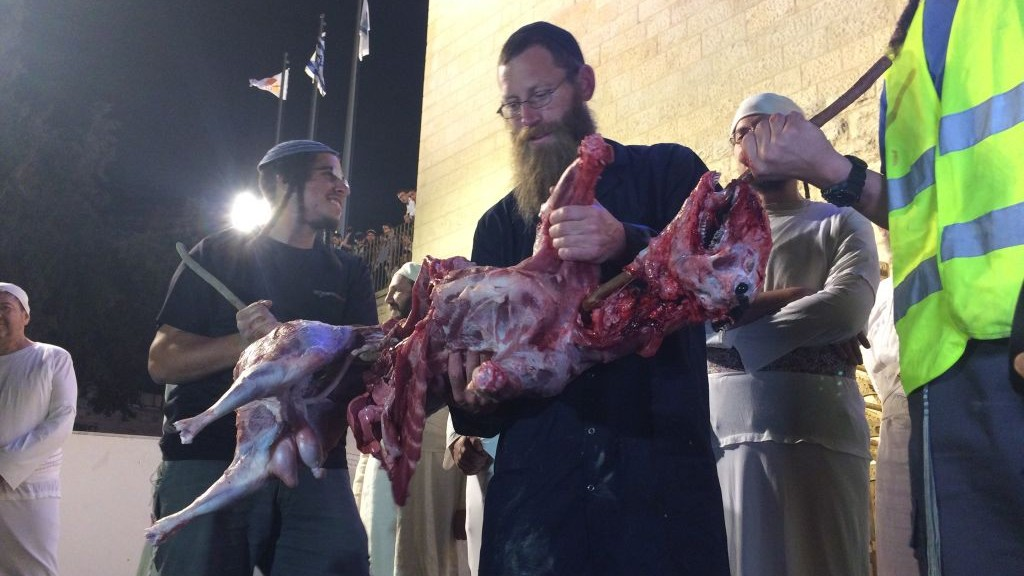 The ritual slaughterer presents the sheep as part of a demonstration about the Passover sacrifice in Jerusalem's Old City on April 6, 2017. (Alexander Fulbright/Times of Israel)