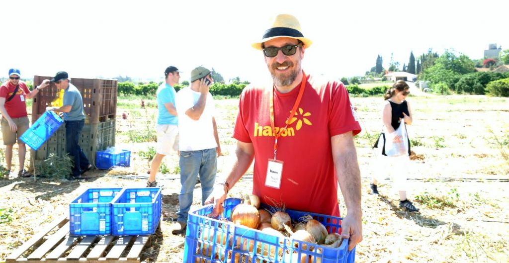 Nigel Savage on a Hazon Sustainable Israel Tour, harvesting with Leket. (Courtesy)