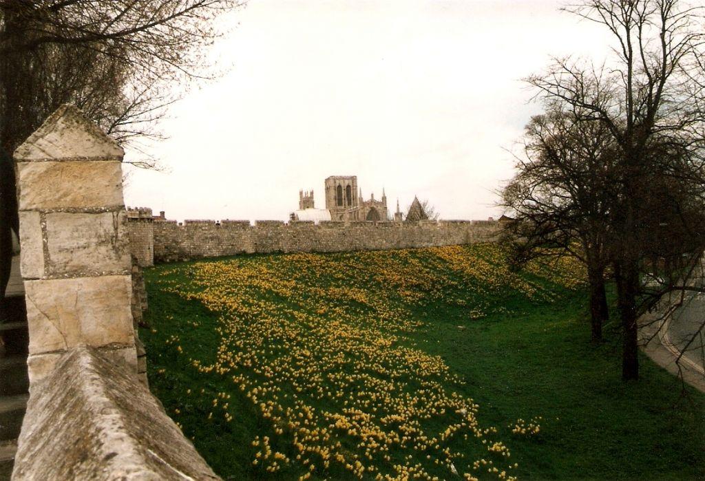 The walls of York City alongside Jewbury Road. (Wikimedia commons/ Rodhullandemu)