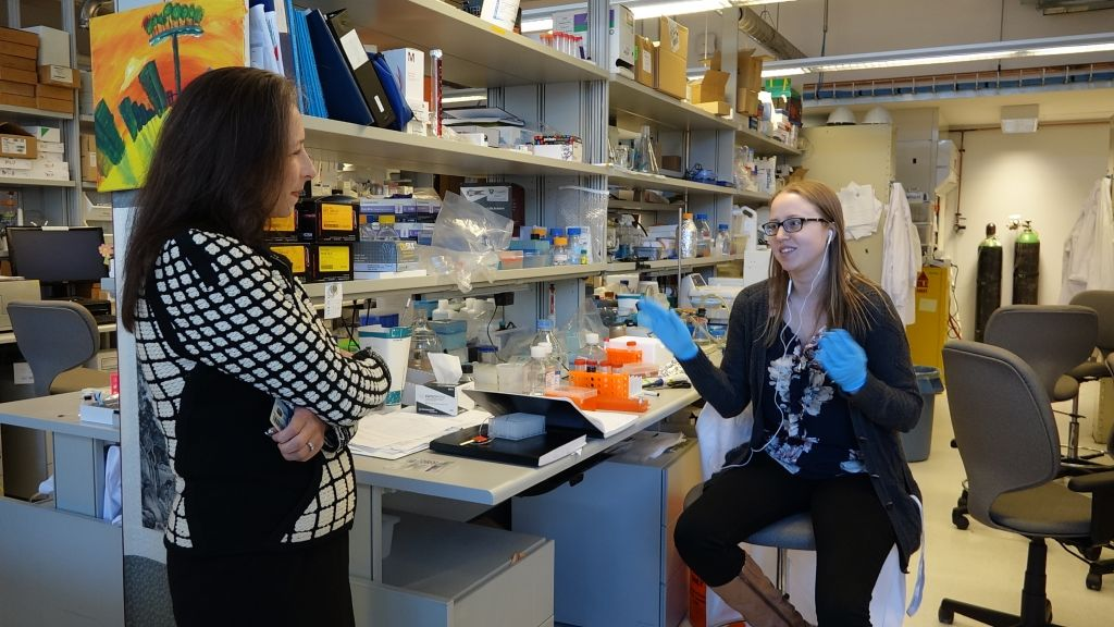 Dr. Molly Shoichet discusses a project with a researcher. (Dana Wachter/Times of Israel)