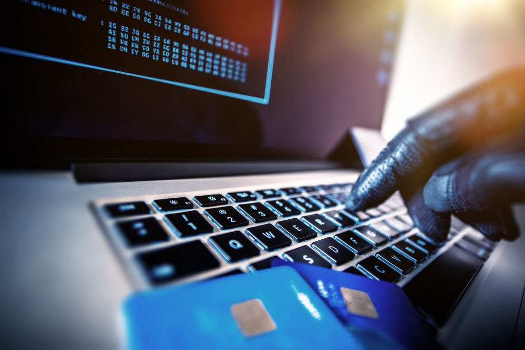3cc07e5d2f5 8 Israelis among nearly 500 arrested over alleged online fraud in ...